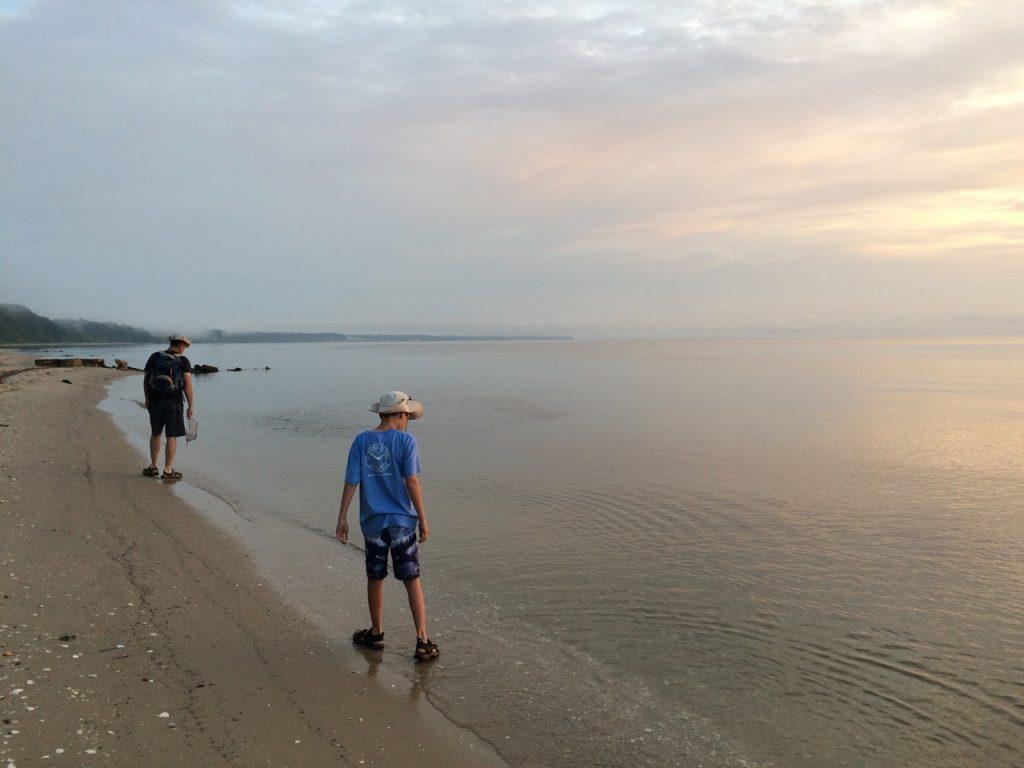 Beachcombing for fossils